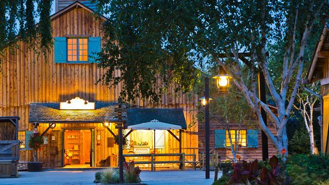 Oferte Disney Ranch Davy